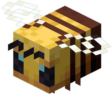 通常のミツバチ